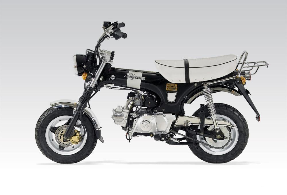 moto skyteam 50 cm3 homologu 1. Black Bedroom Furniture Sets. Home Design Ideas