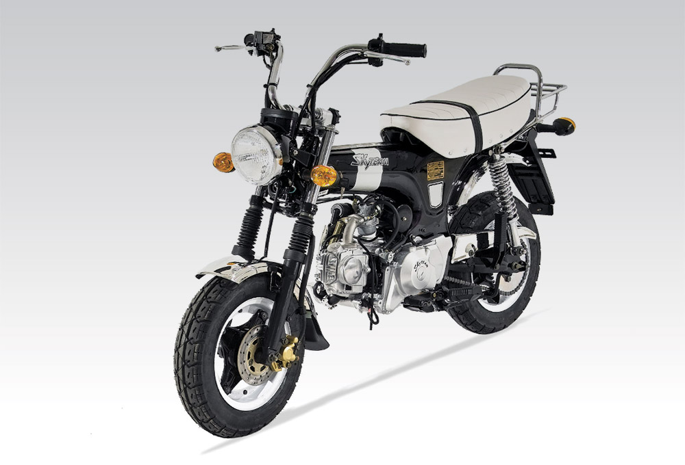 importateur moto dax 125 moto skyteam 125 cm3. Black Bedroom Furniture Sets. Home Design Ideas